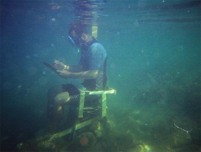 acvariu desen subacvatic