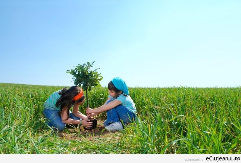 Copiii clujeni se bucură de proprii lor arbori, graţie Primăriei!