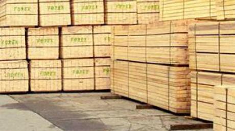 Volumul lemnului exploatat în 2012, mai mare faţă de anul precedent