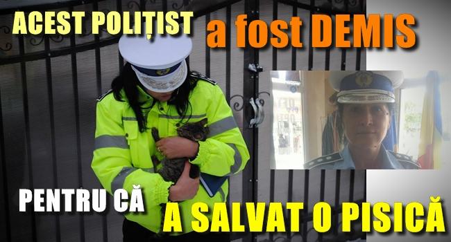 Revoltator. O politista care a salvat viata unei pisici maltratate a fost DEMISA