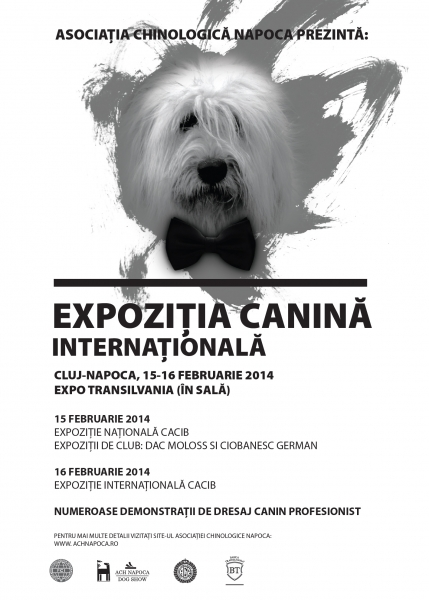 expozitie canina expo transilvania 2014