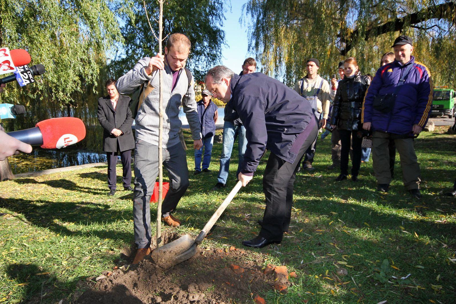 """Incep plantările de copaci pe Bulevardul Muncii. Proiectul """"Padurea Clujenilor"""" reluat si anul acesta"""