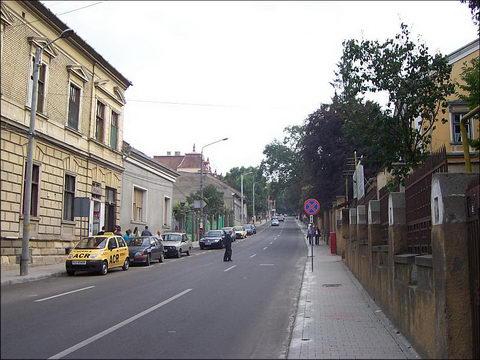 Un barbat gol pusca surprins in timp ce se masturba in centrul Clujului!