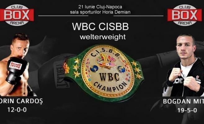 box profesionist_box club arena