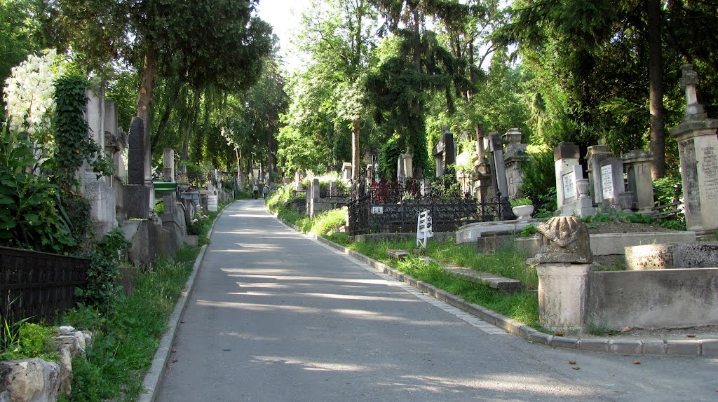 cimitir central