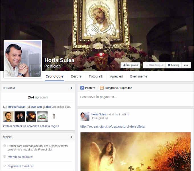 horia sulea facebook