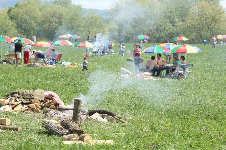 Floreștiul ar putea avea o zonă de picnic pe 10 hectare