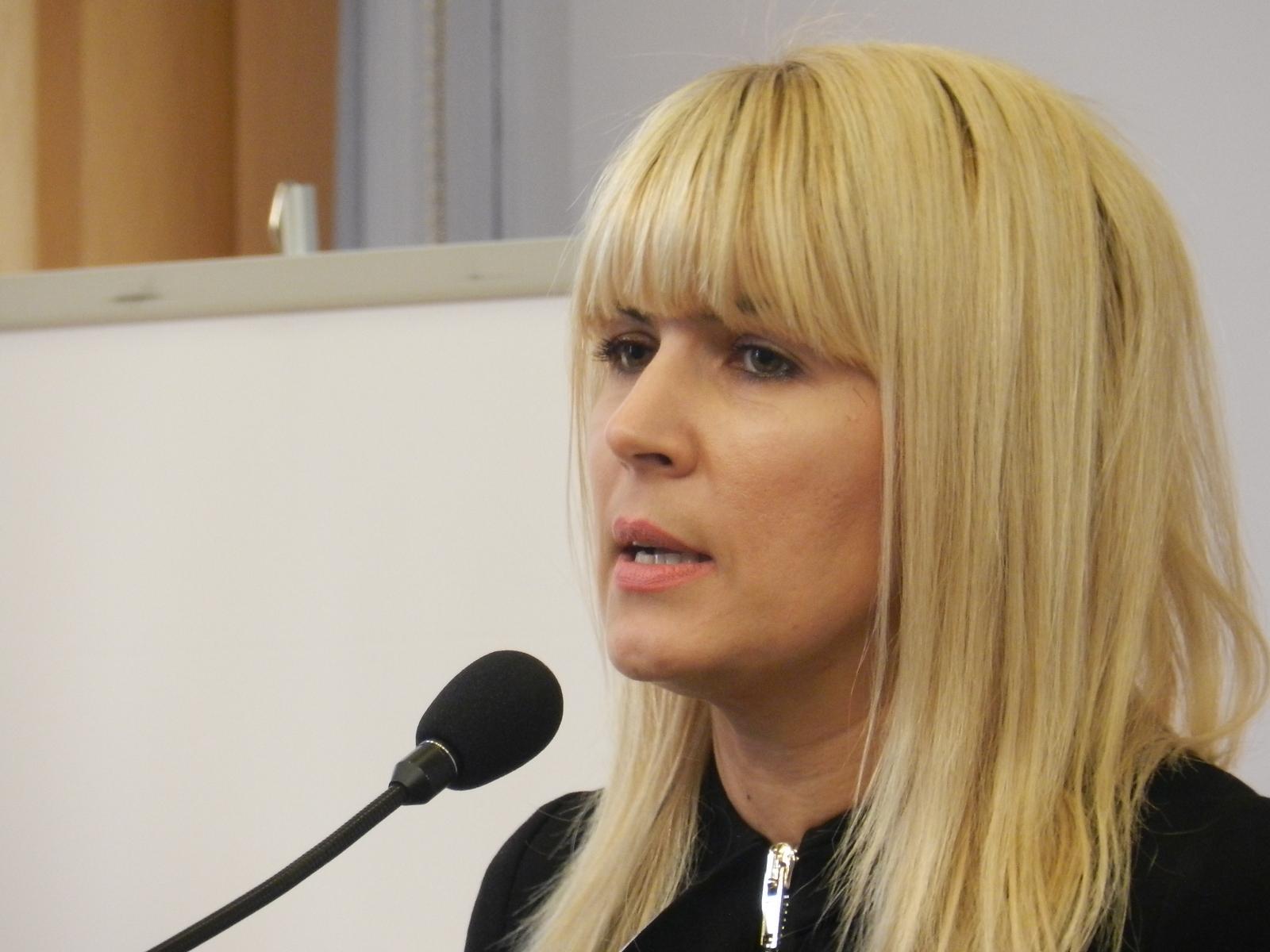 """Elena Udrea a fost arestată preventiv în dosarul """"Gala Bute"""""""