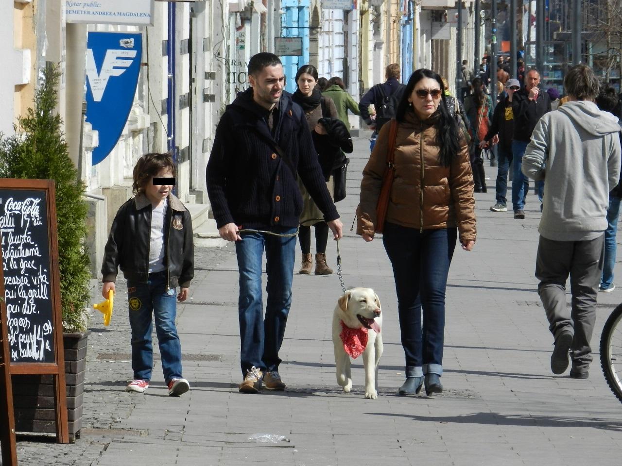 Câmpia Turzii, prima localitate din România în care toți câinii cu stăpân sunt microcipați