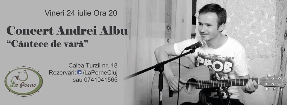 """Concertul bloggerului clujean Andrei Albu, vineri, """"La Perne"""""""