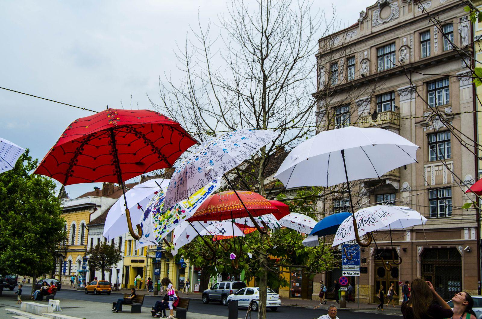 Editia 2014 - umbrele