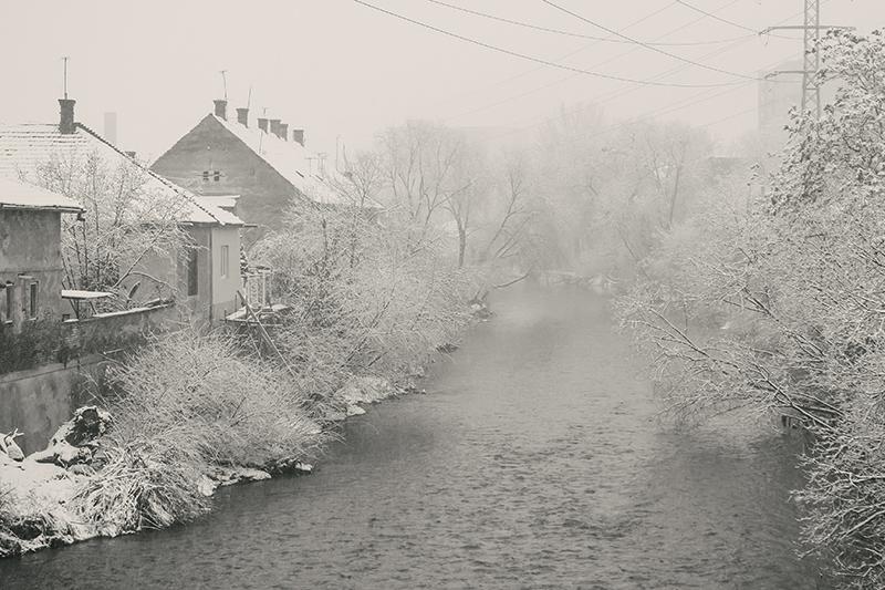 Radu Pădurean - Iarna (locul 1)