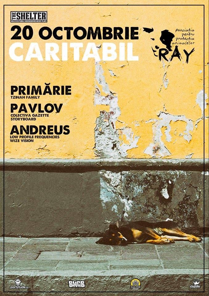 petrecere caritabila ray the shelter