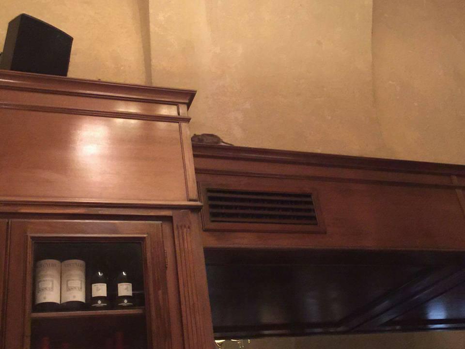 """Un șoricel care dădea târcoale prin Toulouse Cafe-Brasserie a devenit """"vedetă"""" pe rețelele sociale"""