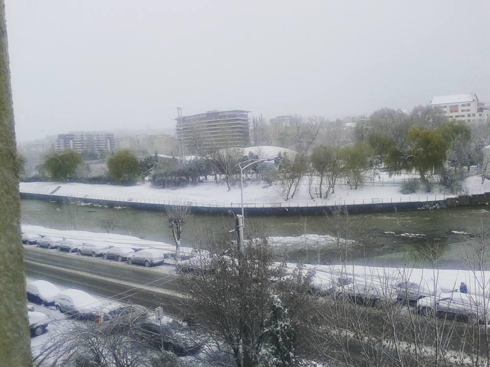ninsoare-cluj-13-noiembrie-2016