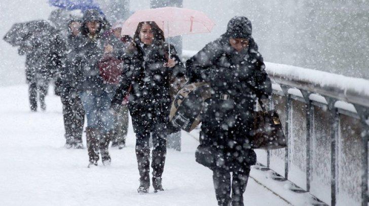 Cod galben de ninsori viscolite în zonele montane din județul Cluj, începând de marți seară