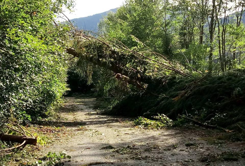 Consiliul Judeţean Cluj oferă un sprijin financiar pentru înlăturarea efectelor calamităților naturale
