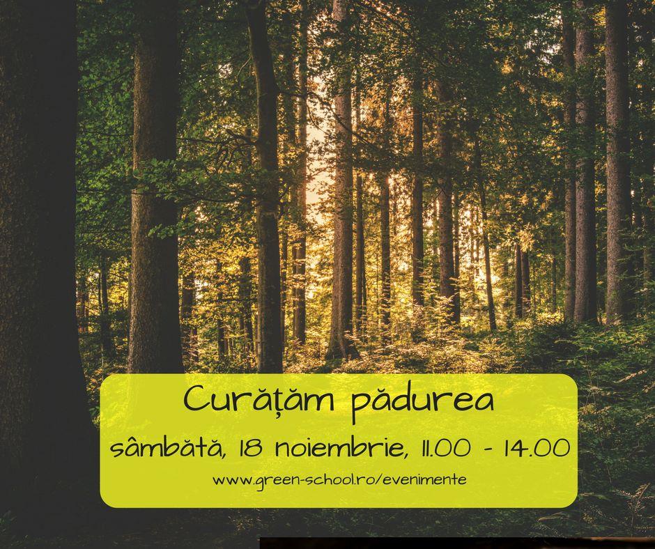 Acțiune de ecologizare a pădurii Hoia din Cluj, în 18 noiembrie!