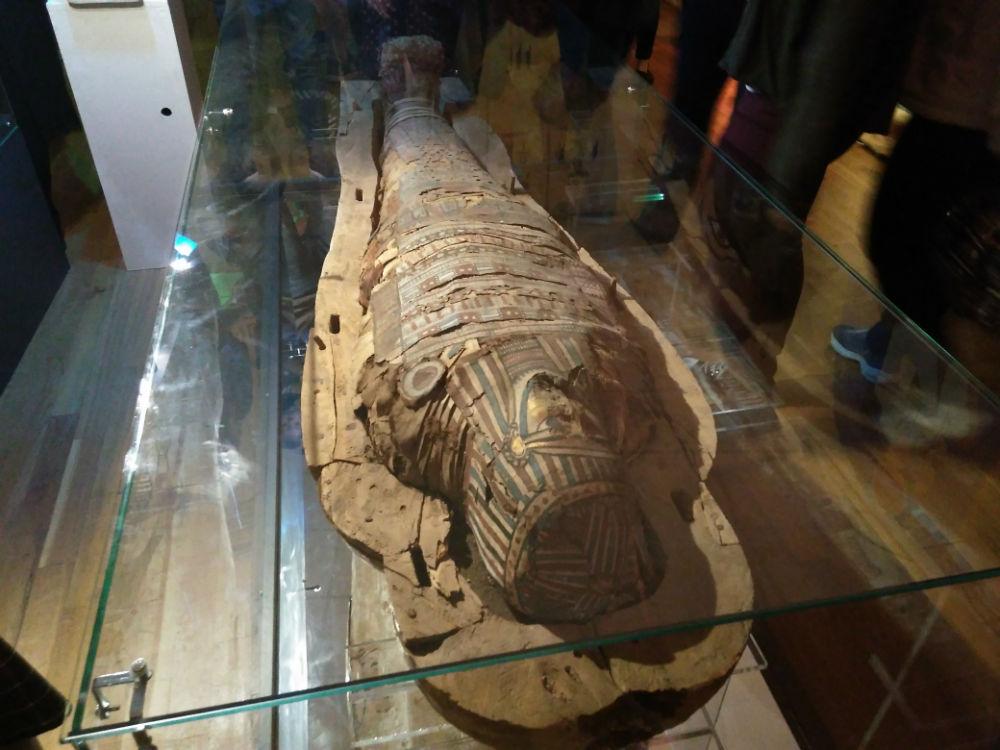 Egiptul și misterele lui la Muzeul Național de Istorie a Transilvaniei! Expoziție deschisă publicului până pe 18 iunie!