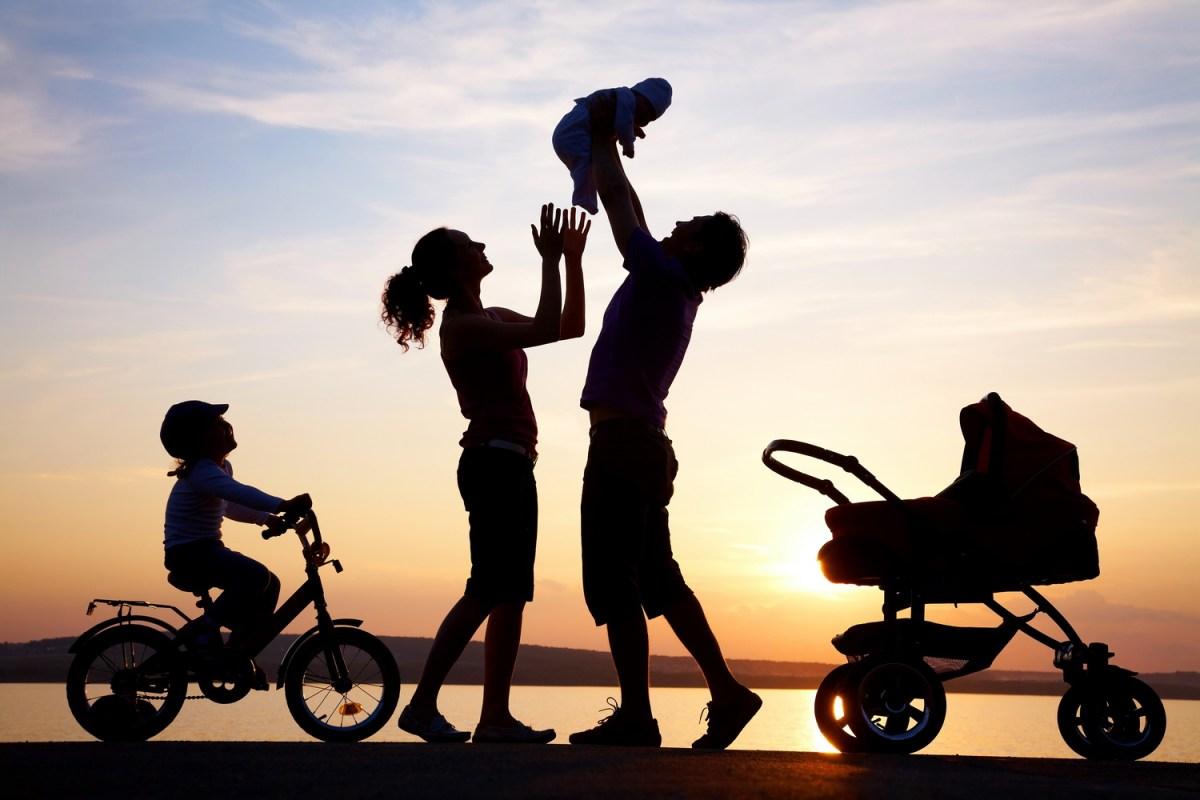 Când ar putea avea loc referendumul pentru redefinirea familiei!