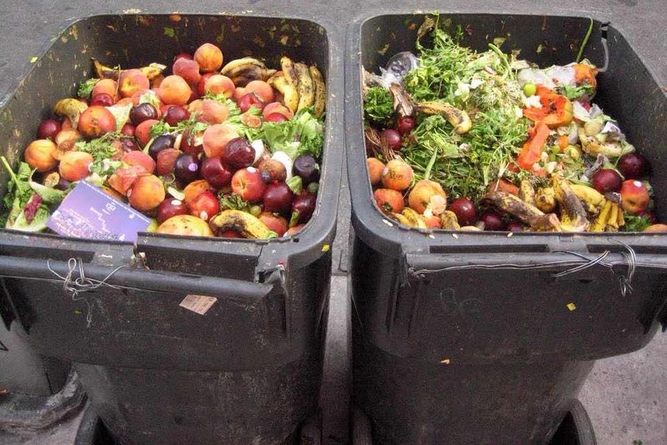 """Europarlamentar Daniel Buda: """"Românii aruncă tone de mâncare"""""""