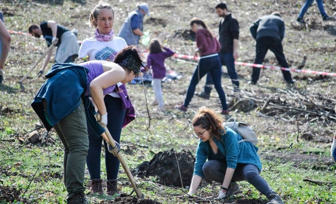 Voluntarii CERT Transilvania au plantat 20.000 de puieți în Tăuți din Florești