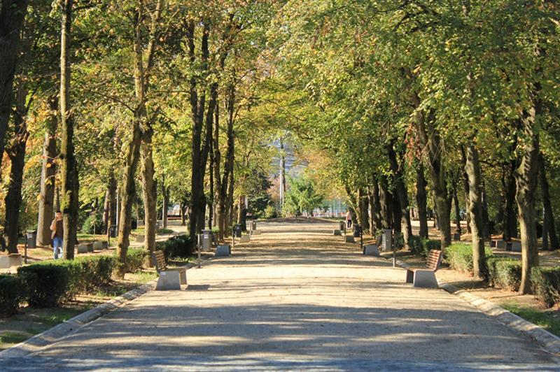 """Mini-biblioteci pentru iubitorii de lectură în aer liber, instalate azi în Parcul """"Babeş"""""""