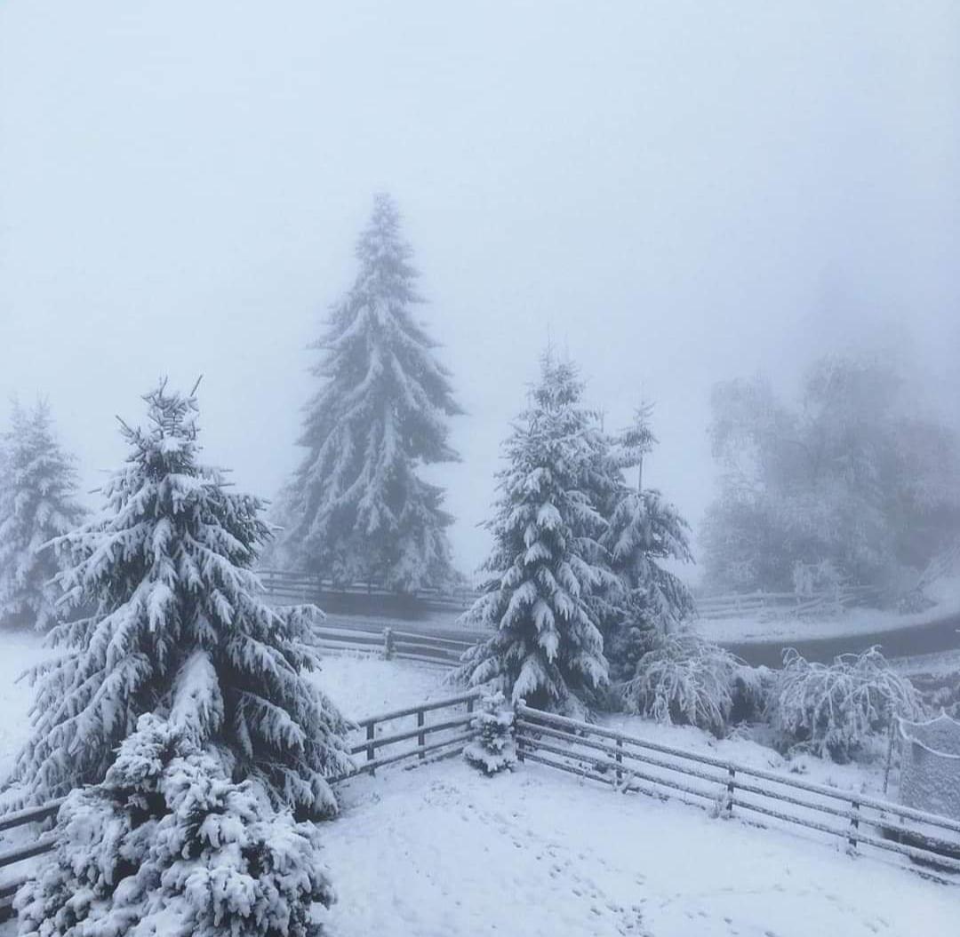 Iarna și-a intrat în drepturi în zona montană a Clujului!