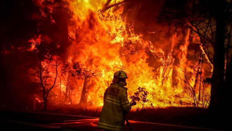 MAE lansează o avertizare de călătorie în Australia, din cauza incendiilor devastatoare