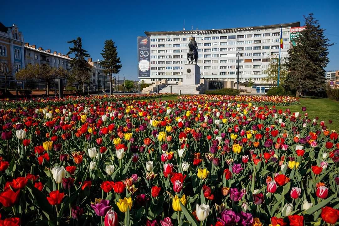 Imagini feerice surprinse în centrul Clujului – FOTO