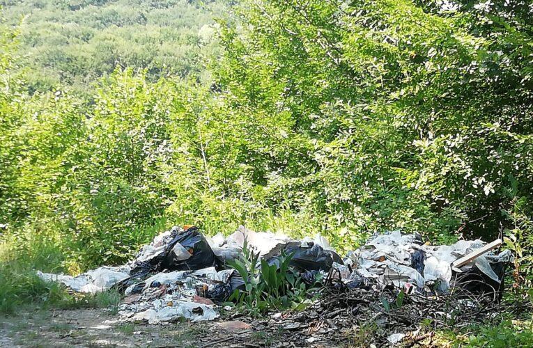 Semnal de alarmă tras de deputatul independent Adrian Dohotaru: Munți de gunoaie și tăieri ilegale în pădurea Făget
