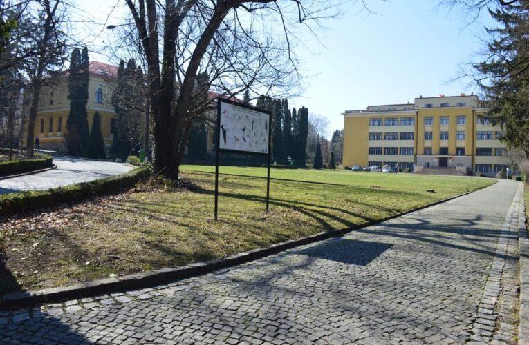Modul de desfășurare al noului an universitar la USAMV Cluj: cursuri și seminarii online, lucrări practice în campus și în stațiuni/ferme